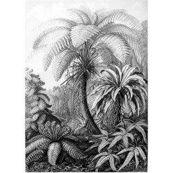 Tuindoek - Tuinposter Palmboom 000117