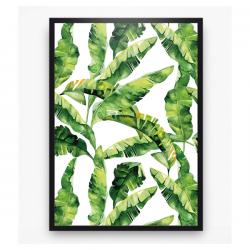Poster - Bananen bladeren banana leaves