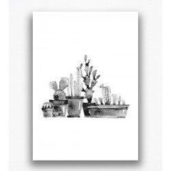 Poster - Cactussen zwart wit