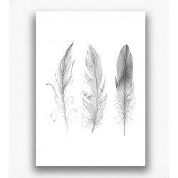 Poster - Veren zwart wit