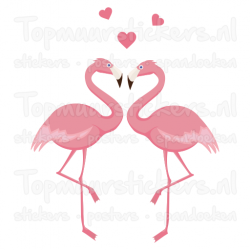 Muursticker - Interieursticker Flamingo koppel