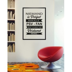 Poster - Niemand is perfect PSV